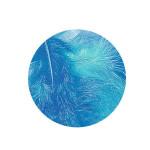 Plume décorative 3-10cm sachet de 10 assorties - Bleu